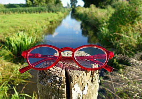 glasses-1582473_1280